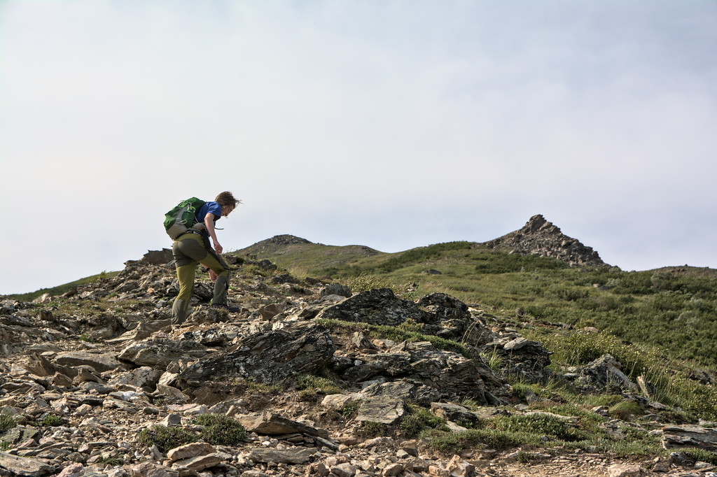 Hiker on the Bison Gulch Trail on Mt. Healy