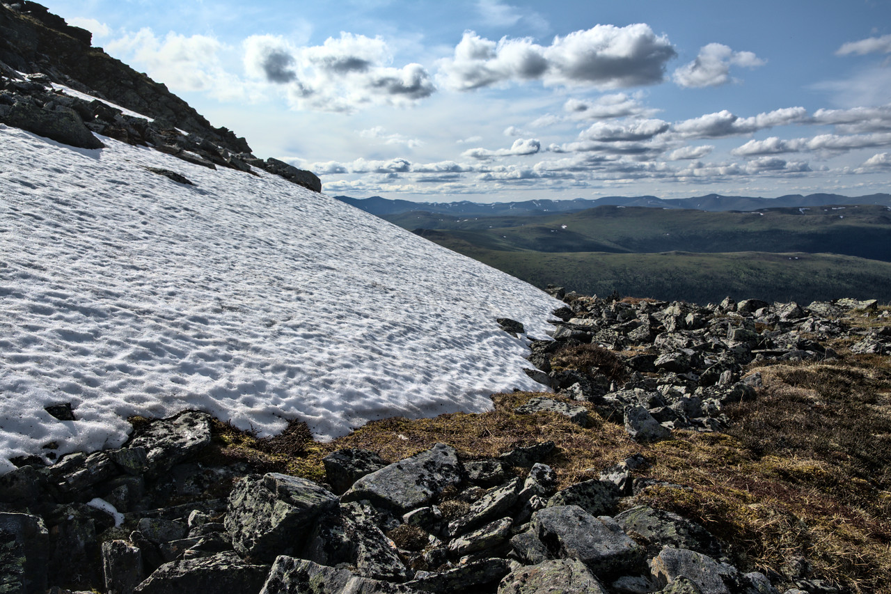 Lingering snow on McManus Mountain in late June.