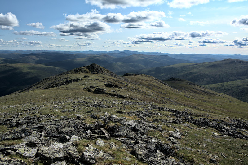 Gorgeous and endless views of the White Mountains from the summit