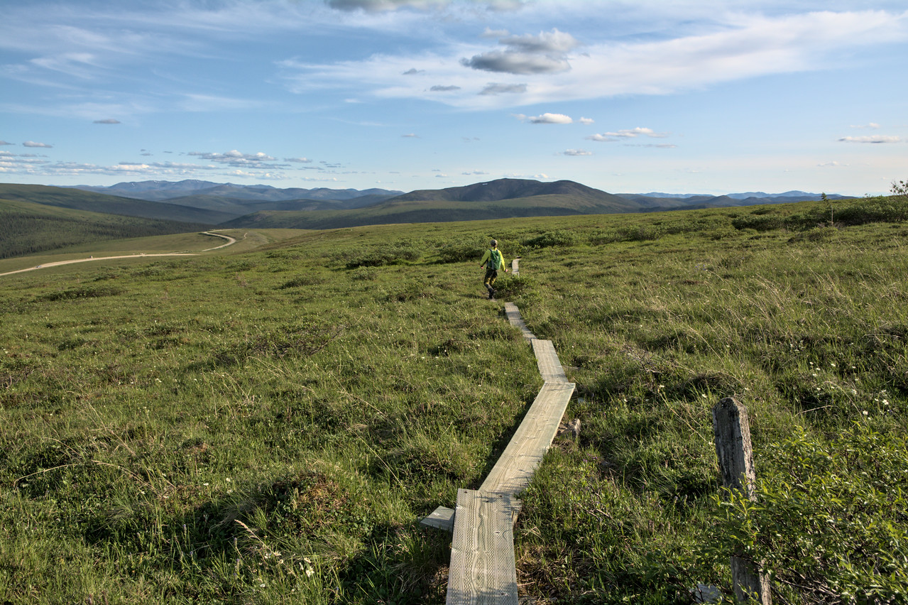 Hiking back down the final stretch of the Pinnell Mountain Trail on the boardwalk