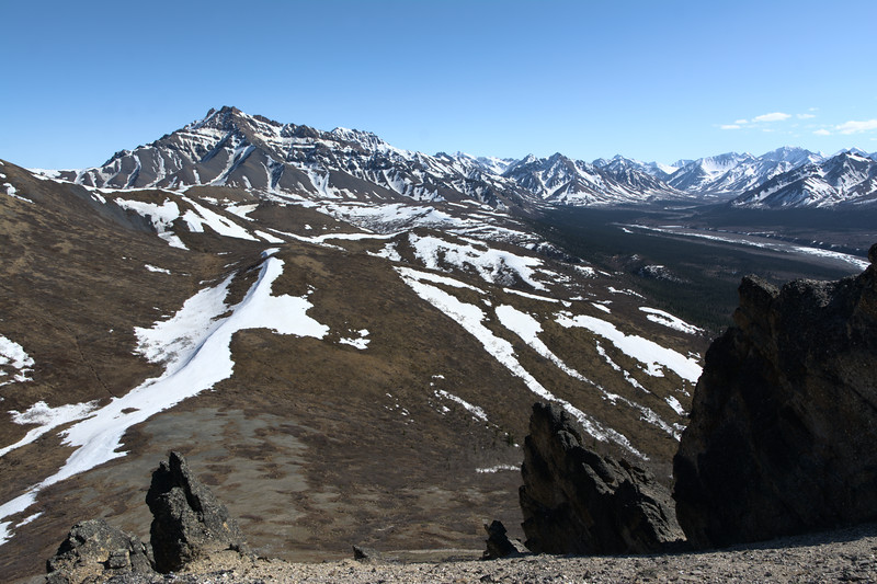 Wild and Trailless – Denali National Park