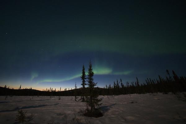 Wisps of Aurora