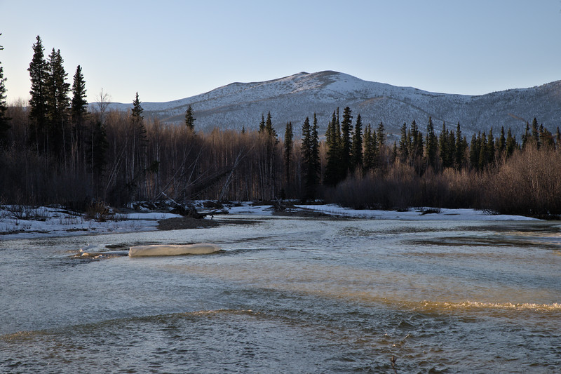 Looking over the melting North Fork of the Chena River from the Angel Rock Trail