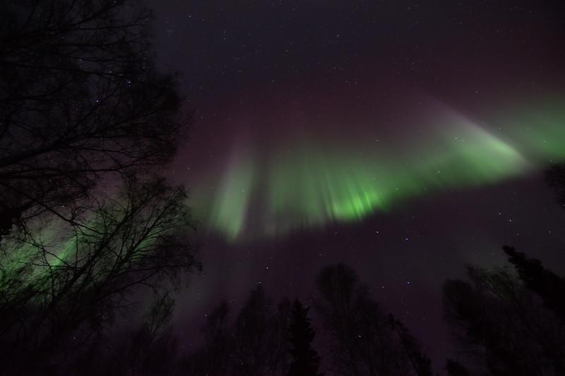 Aurora borealis showing picket fence display