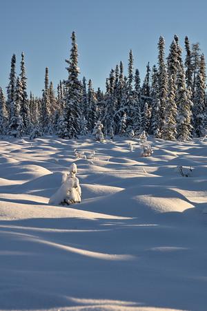 Snow Bumps