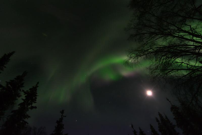 Aurora Borealis – February 19-21, 2021