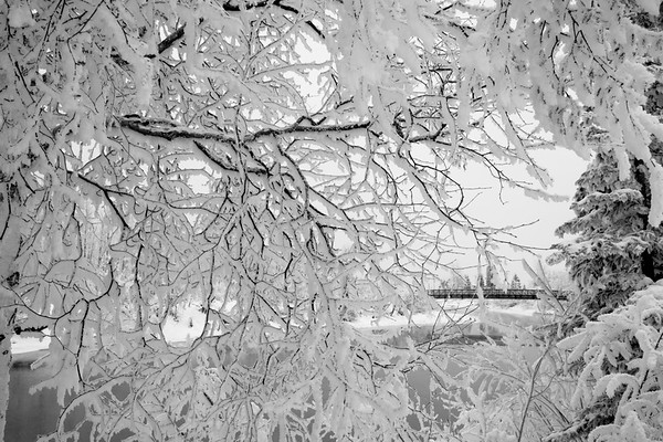 Frost and Bridges