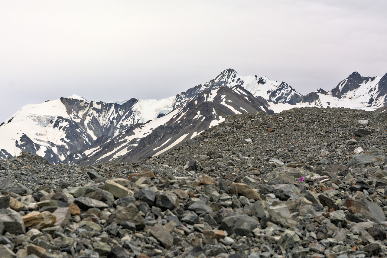 Mountains of the Alaska Range over a glacial moraine