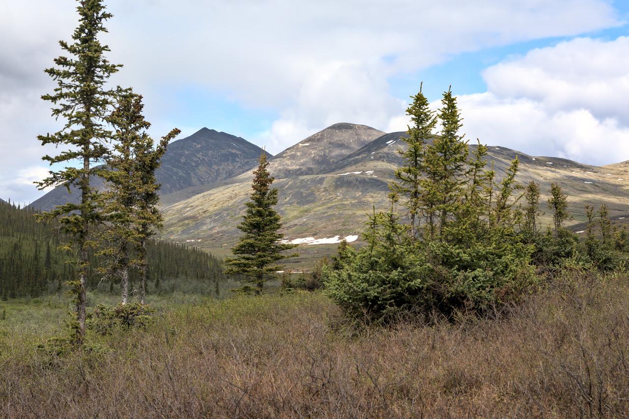 mountain landscape of nome creek