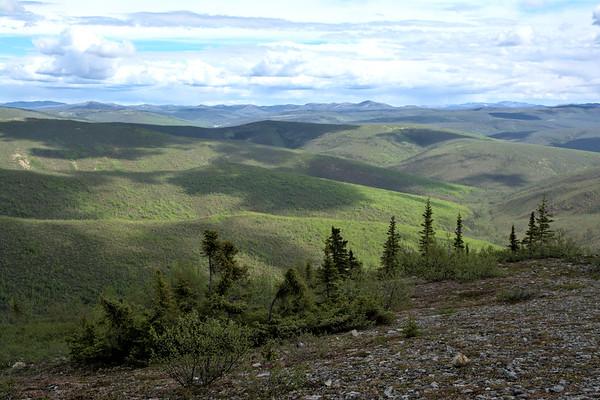 White Mountains Landscape