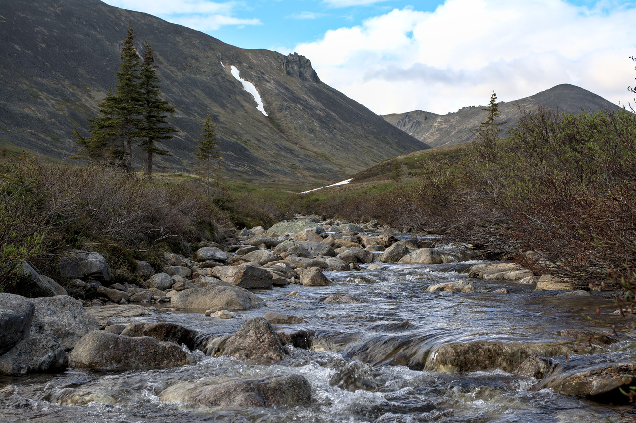 Stream and mountains in the White Mountain National Recreation Area, Alaska