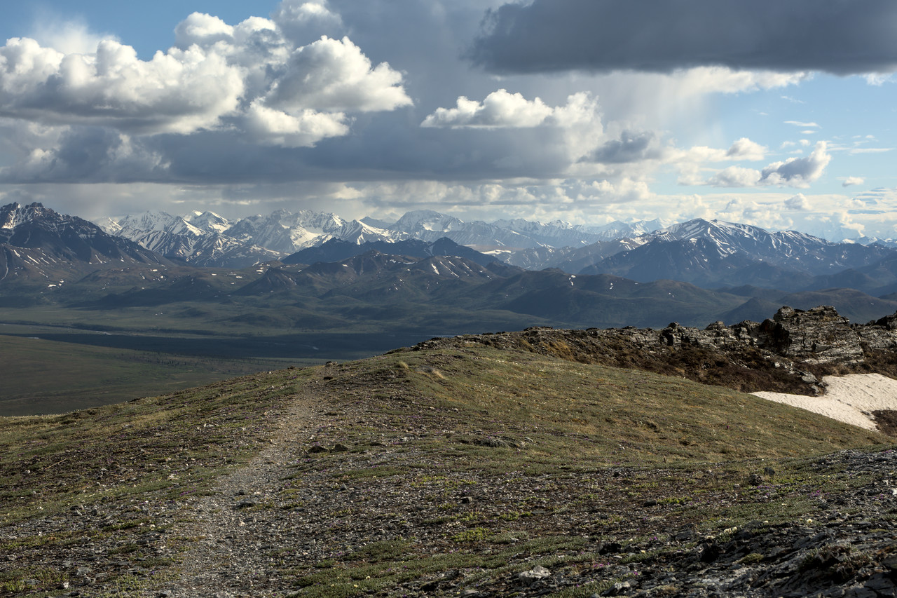 View of the Alaska Range on the descent from Mt. Margaret