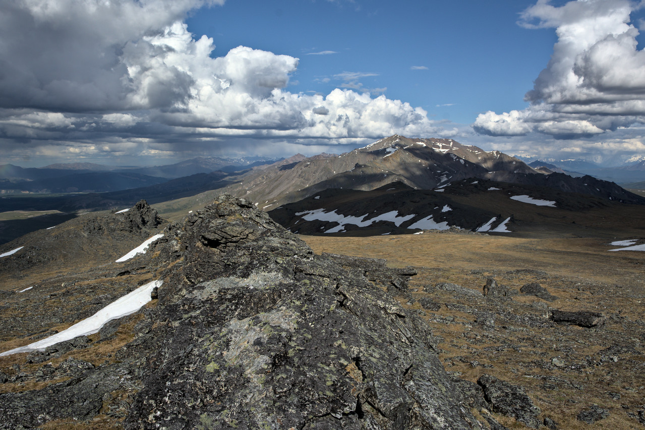 The view to the east from Mt. Margaret in Denali National Park