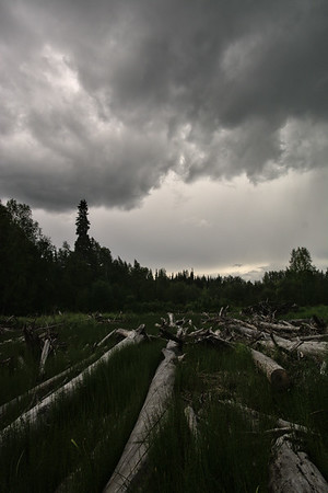 Logs and Storms