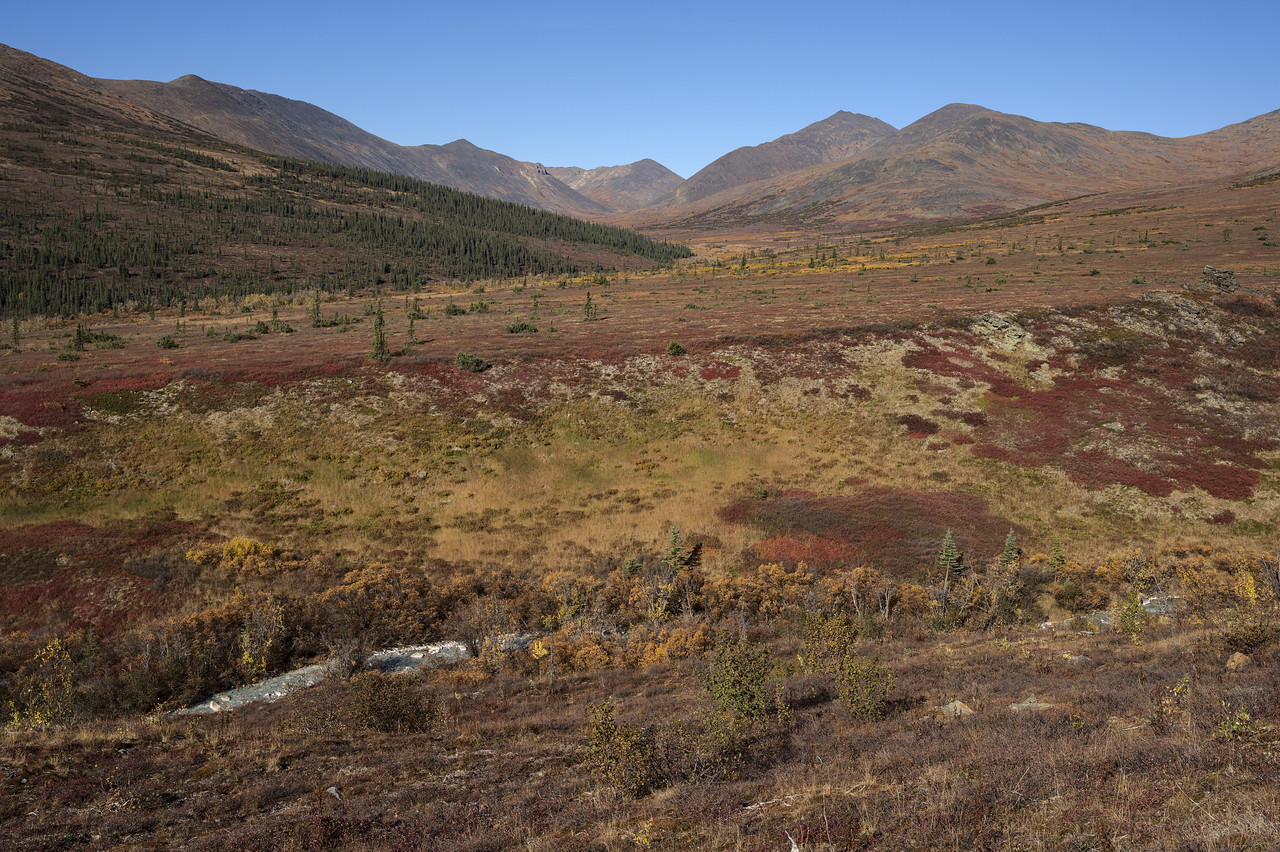 Nome Creek Hills – Backcountry Hiking