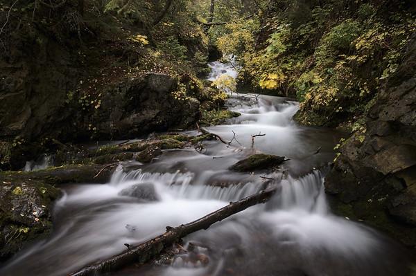McHugh Creek