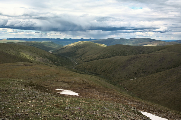 Landscape from the Mastodon Dome Trail in the White Mountains, Alaska.