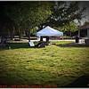 Pawfest   Largo Central Park April 7, 2012-P1180466