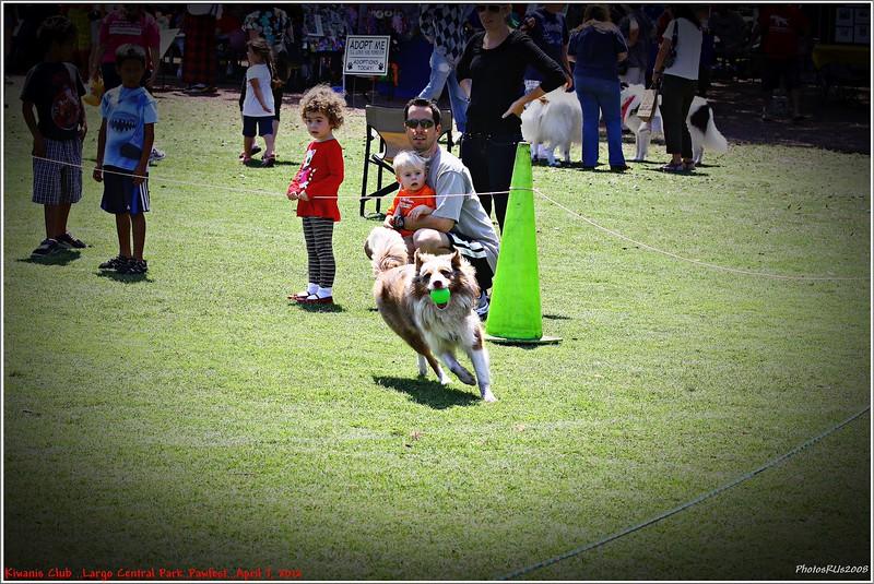 Pawfest   Largo Central Park April 7, 2012-IMG_6016