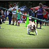 Pawfest   Largo Central Park April 7, 2012-IMG_6037