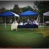 Pawfest   Largo Central Park April 7, 2012-P1180431