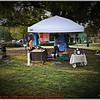 Pawfest   Largo Central Park April 7, 2012-P1180411