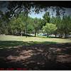 Largo Central Park April 6, 2012P1180349