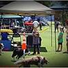 Pawfest   Largo Central Park April 7, 2012-IMG_5936