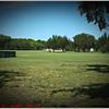Largo Central Park April 6, 2012P1180351