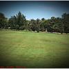 Largo Central Park April 6, 2012P1180340