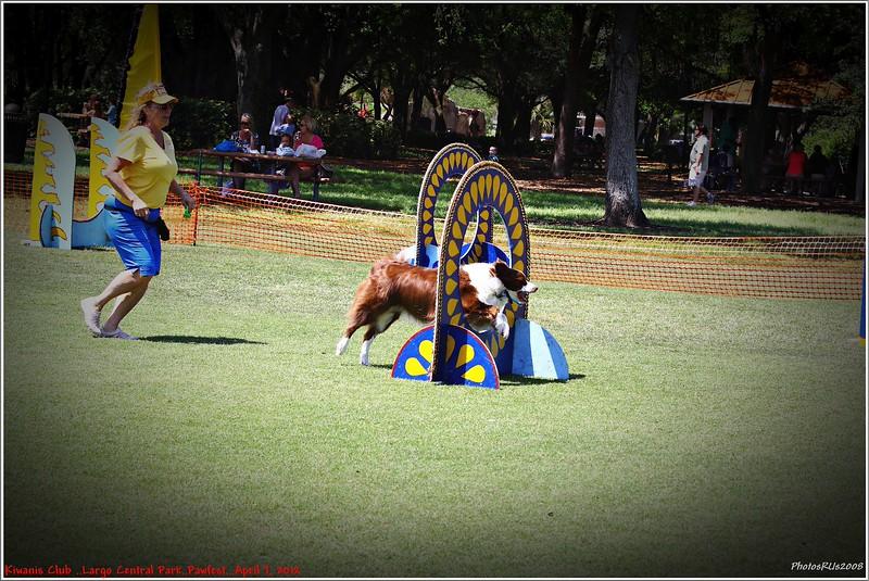 Pawfest   Largo Central Park April 7, 2012-IMG_5893