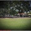 Largo Central Park April 6, 2012P1180332