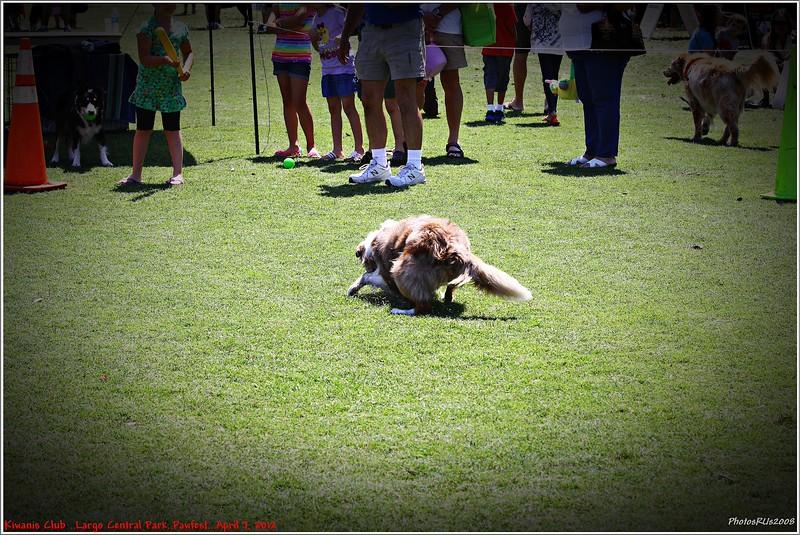 Pawfest   Largo Central Park April 7, 2012-IMG_5960