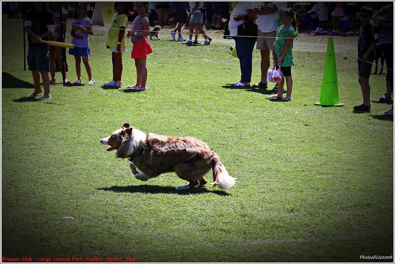 Pawfest   Largo Central Park April 7, 2012-IMG_6030