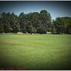 Largo Central Park April 6, 2012P1180342