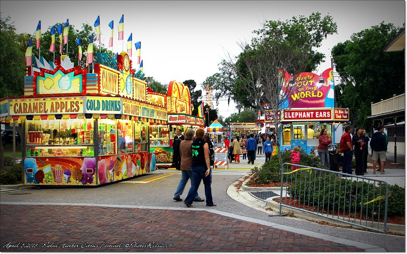 April 5,2013 _IMG_4388_Palm Harbor Citrus Festival
