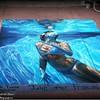 2013-10-27_IMG_5656_2013  Chalk Art Festival,Clearwater Beach Fl