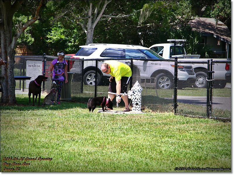 2014-06-30IMG_6048_ Dog Bone Run  Grand Opening   Largo,Fl