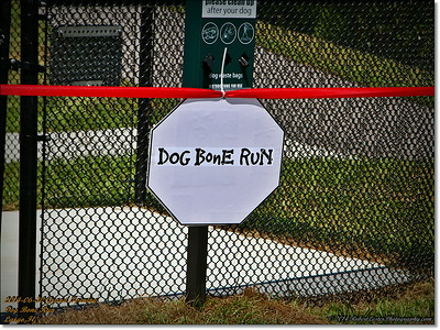 2014-06-30IMG_6110_ Dog Bone Run  Grand Opening   Largo,Fl