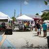 2014-08-30_IMG_2509_Gecko Fest,Gulfport,Fl