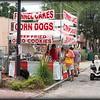 2015-09-05_P9050020_Geckofest,Gulfport,Fl