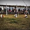 2015-01-18_P1183827_Pasco Fl  Kennel Club Dog Show   Brooksville,Fl