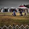 2015-01-18_P1183823_Pasco Fl  Kennel Club Dog Show   Brooksville,Fl