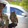 2015-04-04__4046416_Booner Nature Park Ecofest,Largo,Fl