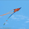 2016-11-12_PB120052_Kite Fest    Treasure Island,Fl