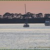 2016-12-03_PC030002_Dunedin Boat Parade