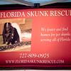 2017-02-25_Get Rescued_Gulfport,Fl-2250046