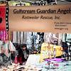 2017-02-25_Get Rescued_Gulfport,Fl-2250044