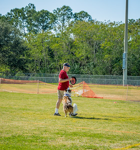 2019-01-19_40x150,pmode, Dogs in Paradise_P1190396