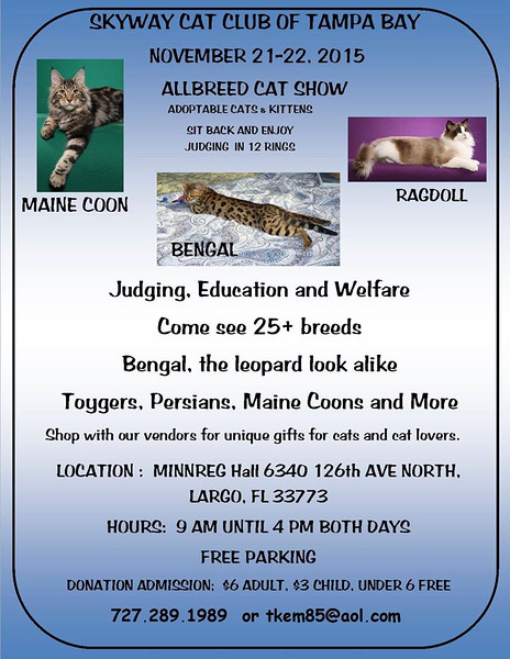 Skyway Cat Club flyer for Nov show 2
